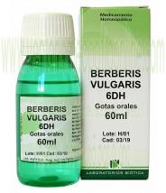 BERBERIS VULGARIS 6DH GOTAS 60ML