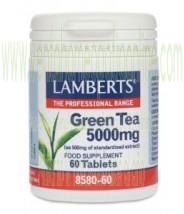 LAMBERTS Té verde 5000 mg  60 TABLETAS