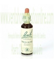BACH WILD ROSE 20ML